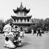 -Armando-Jongejan_11_China_Xian_758-DSCF0255.j-pg