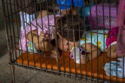 A-childrens-home-Chiang-Mai-5-Ellen-Kolff-2